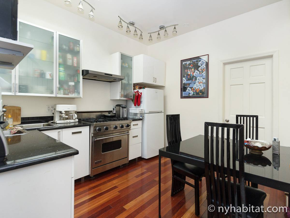 New York T5 appartement colocation - cuisine (NY-17082) photo 1 sur 4