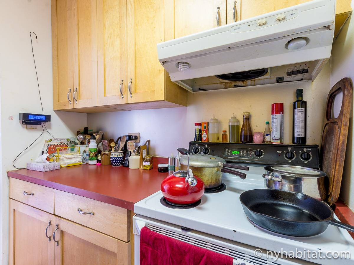 New York 3 Bedroom - Duplex roommate share apartment - kitchen (NY-17088) photo 3 of 4