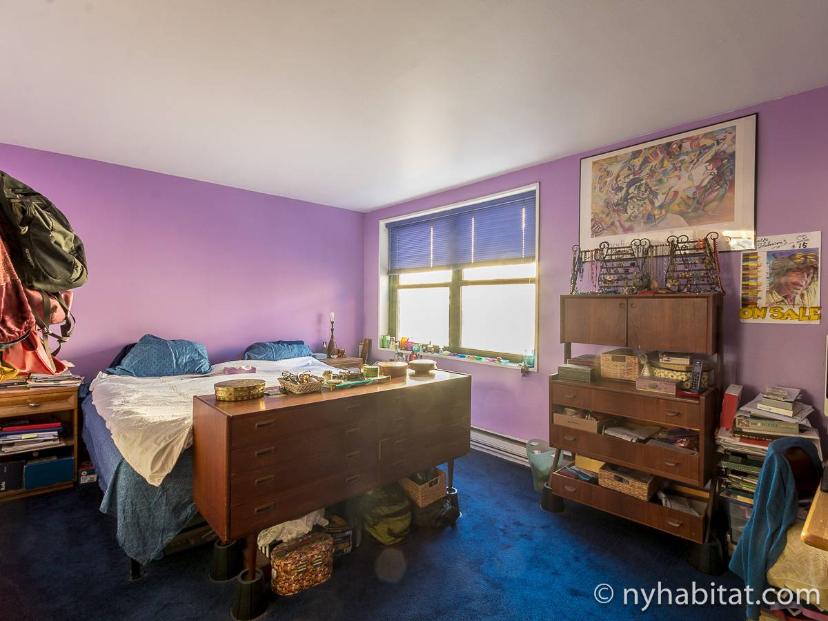 New York 3 Bedroom - Duplex roommate share apartment - bedroom 2 (NY-17088) photo 1 of 6