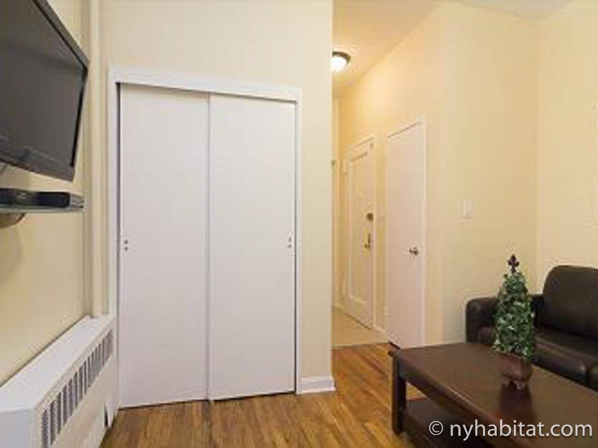 New York 1 Bedroom apartment - living room (NY-17125) photo 4 of 5