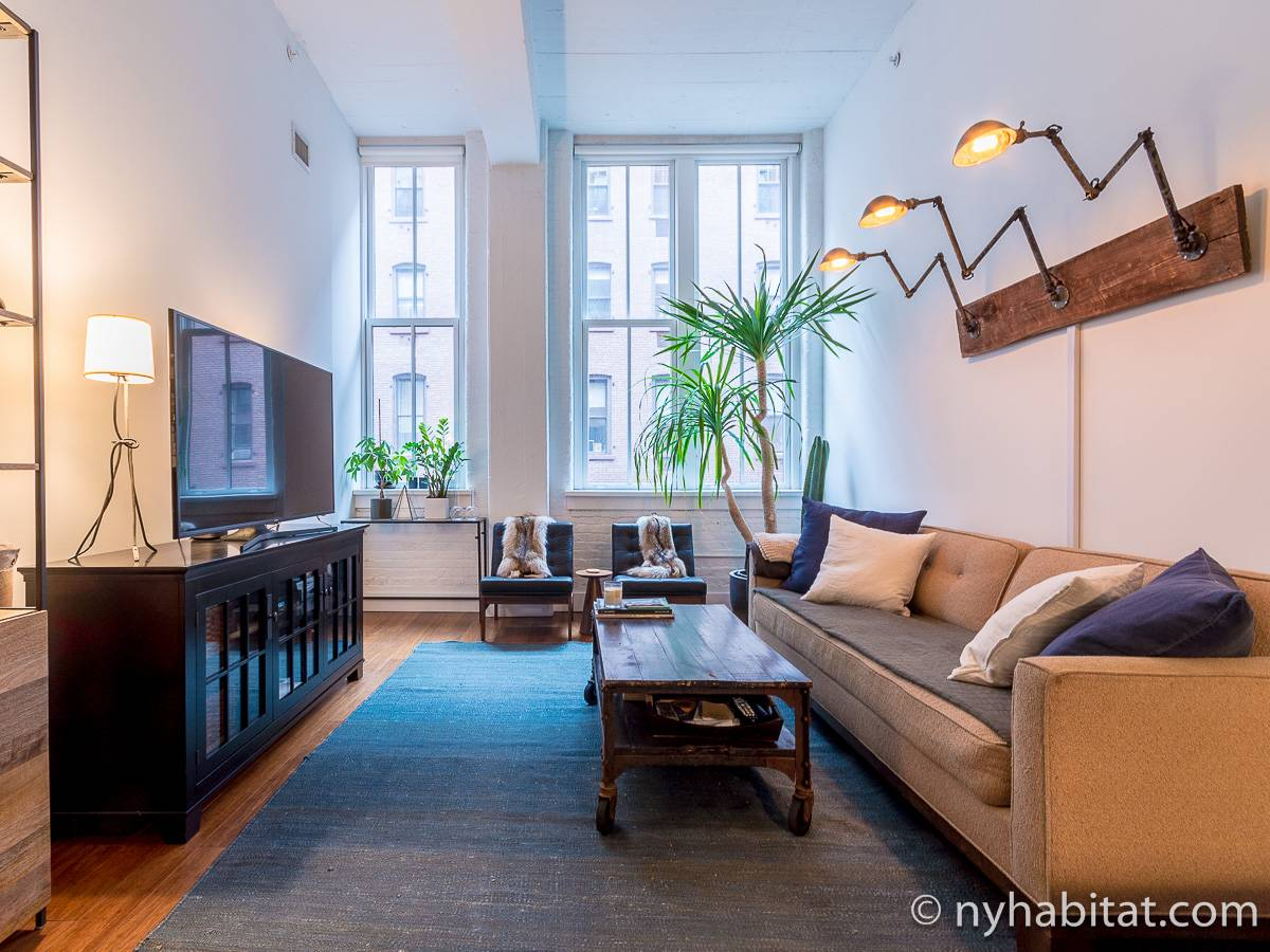 wohnungsvermietung in new york 2 zimmer dumbo ny 17156. Black Bedroom Furniture Sets. Home Design Ideas