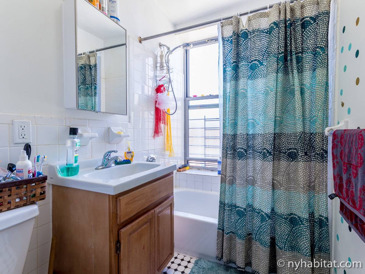 New York 2 Bedroom roommate share apartment - bathroom (NY-17170) photo 2 of 2