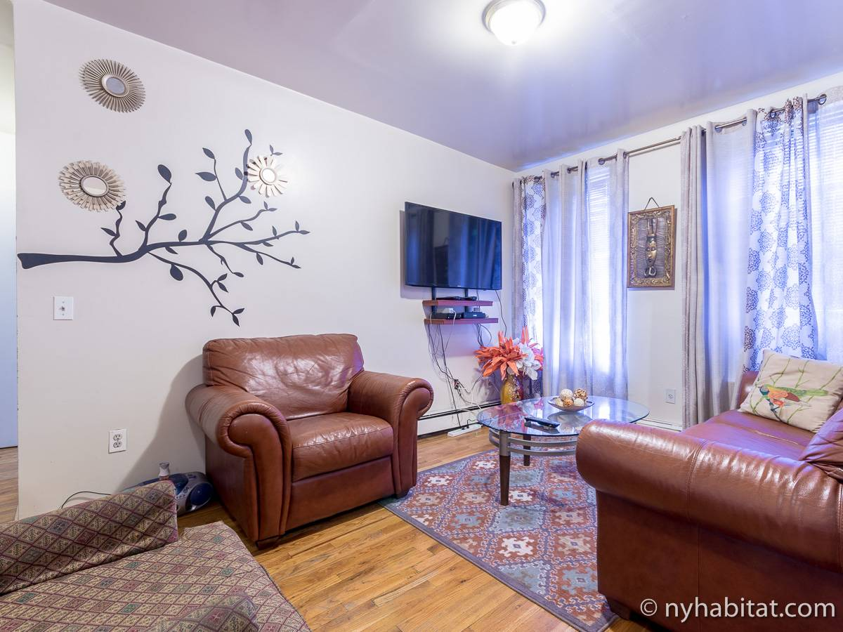 New York 2 Bedroom roommate share apartment - living room (NY-17170) photo 1 of 8