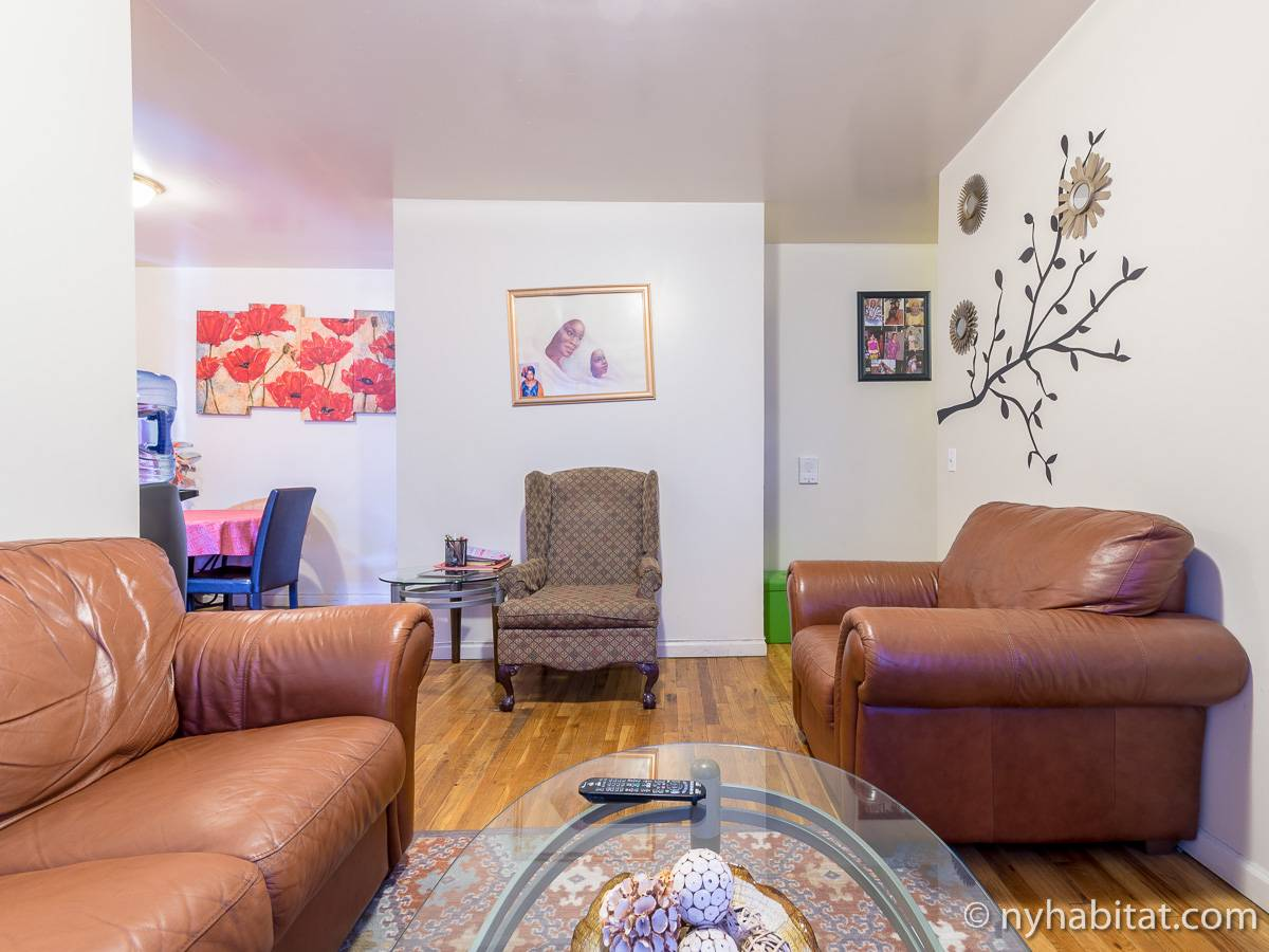 New York 2 Bedroom roommate share apartment - living room (NY-17170) photo 4 of 8