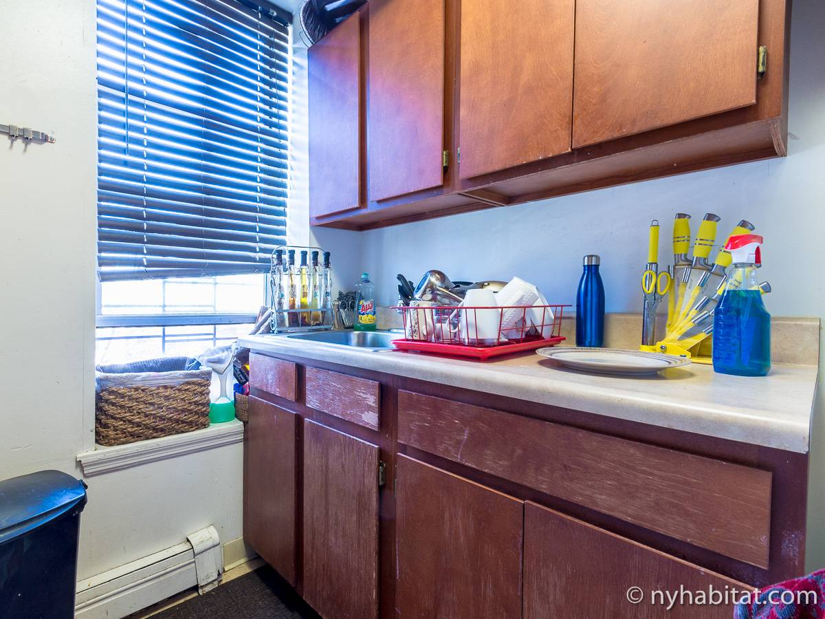 New York 2 Bedroom roommate share apartment - kitchen (NY-17170) photo 4 of 4