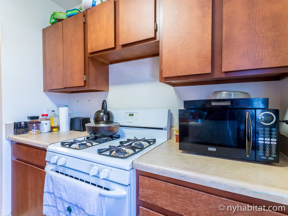New York 2 Bedroom roommate share apartment - kitchen (NY-17170) photo 3 of 4