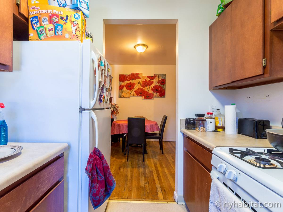 New York 2 Bedroom roommate share apartment - kitchen (NY-17170) photo 2 of 4