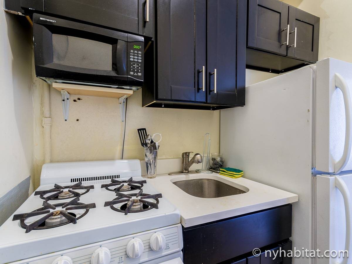 New York 2 Bedroom apartment - kitchen (NY-17198) photo 2 of 4