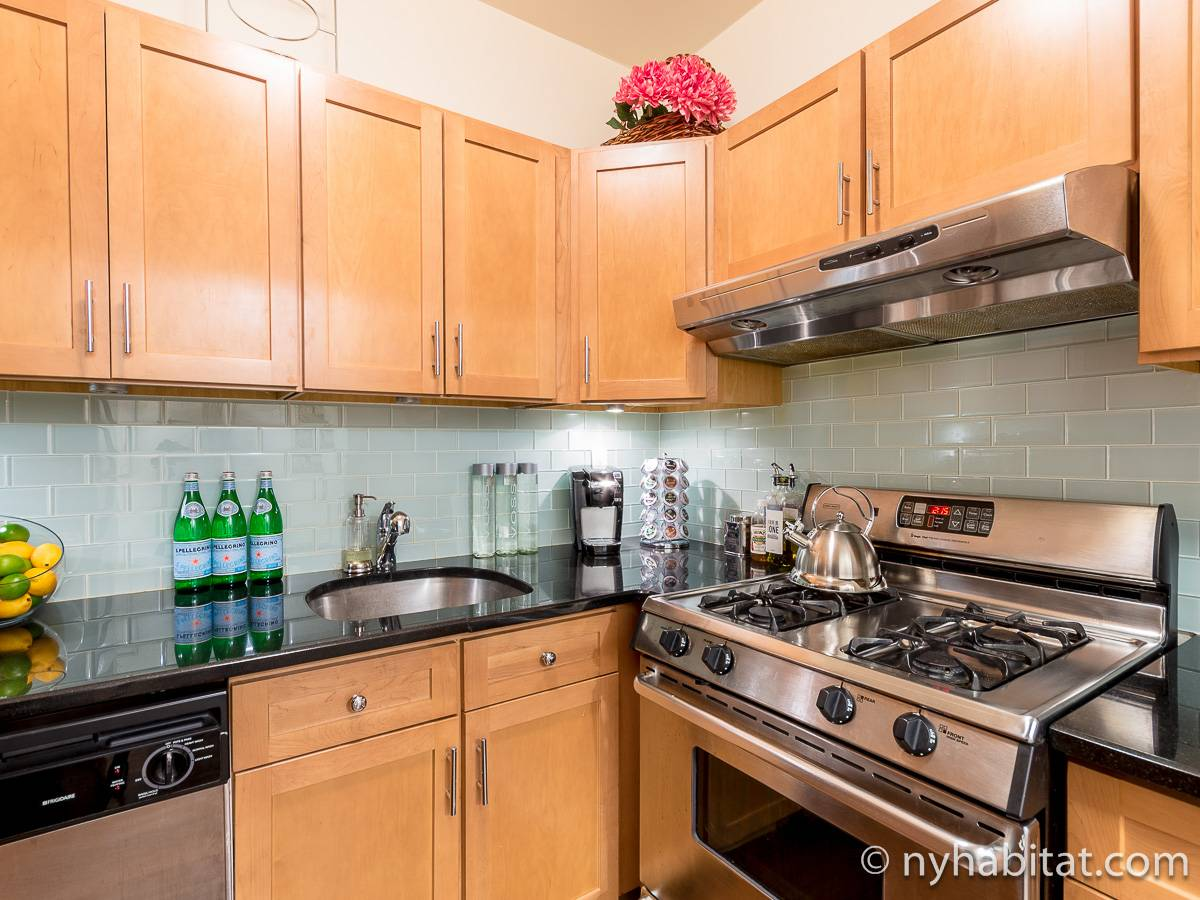 New York 1 Bedroom - Duplex accommodation - kitchen (NY-17228) photo 2 of 4