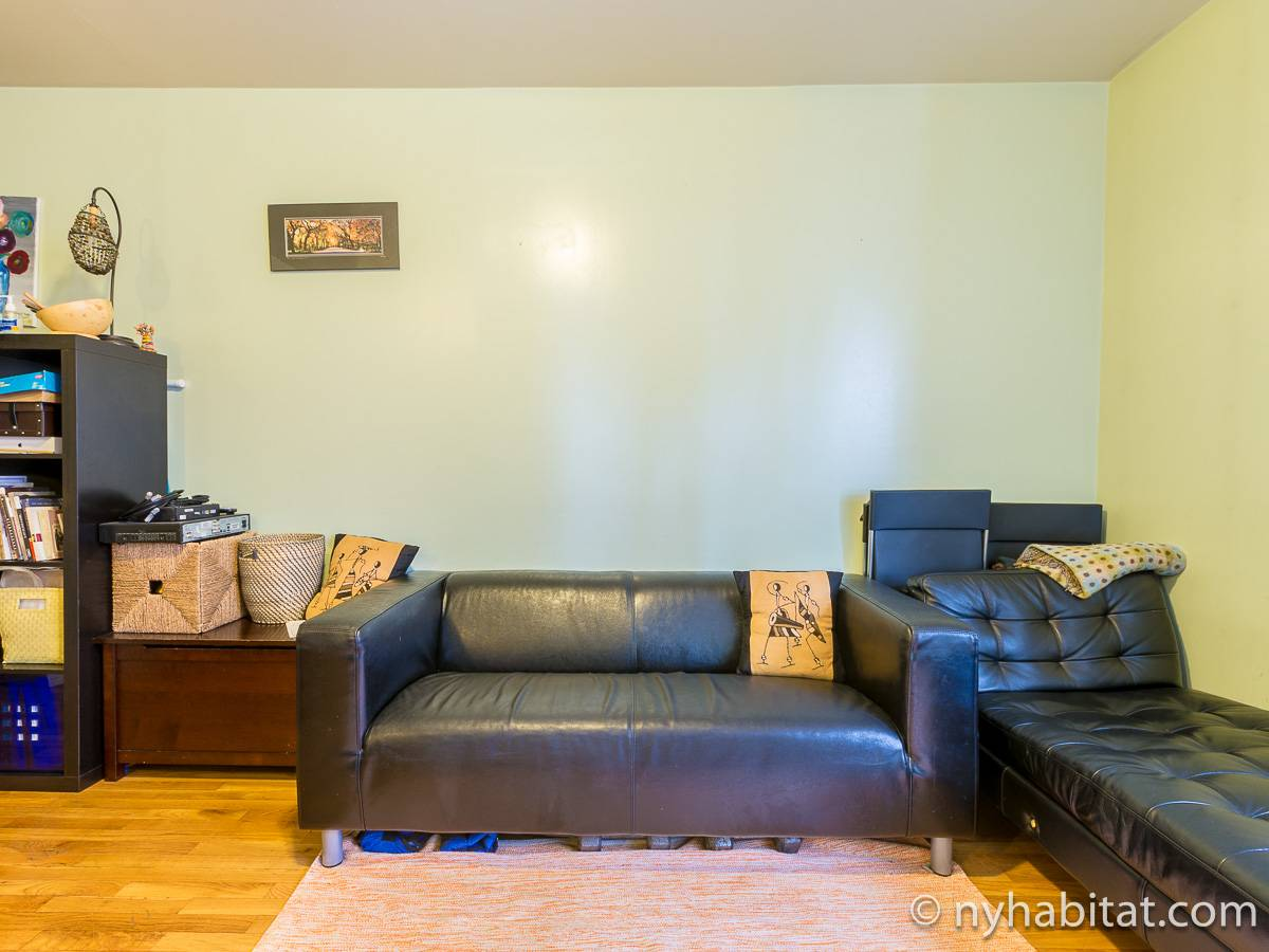 New York T3 appartement colocation - séjour (NY-17232) photo 3 sur 6