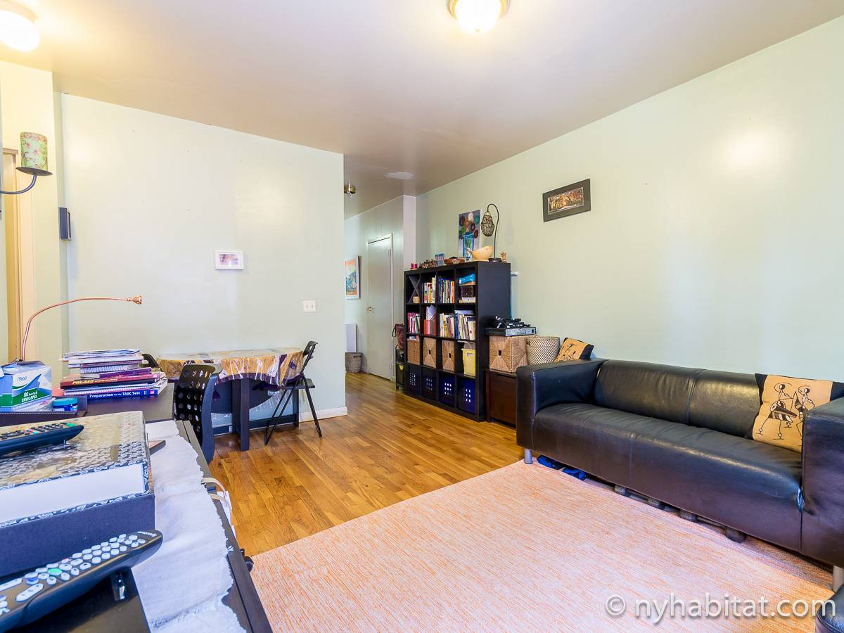 New York T3 appartement colocation - séjour (NY-17232) photo 6 sur 6