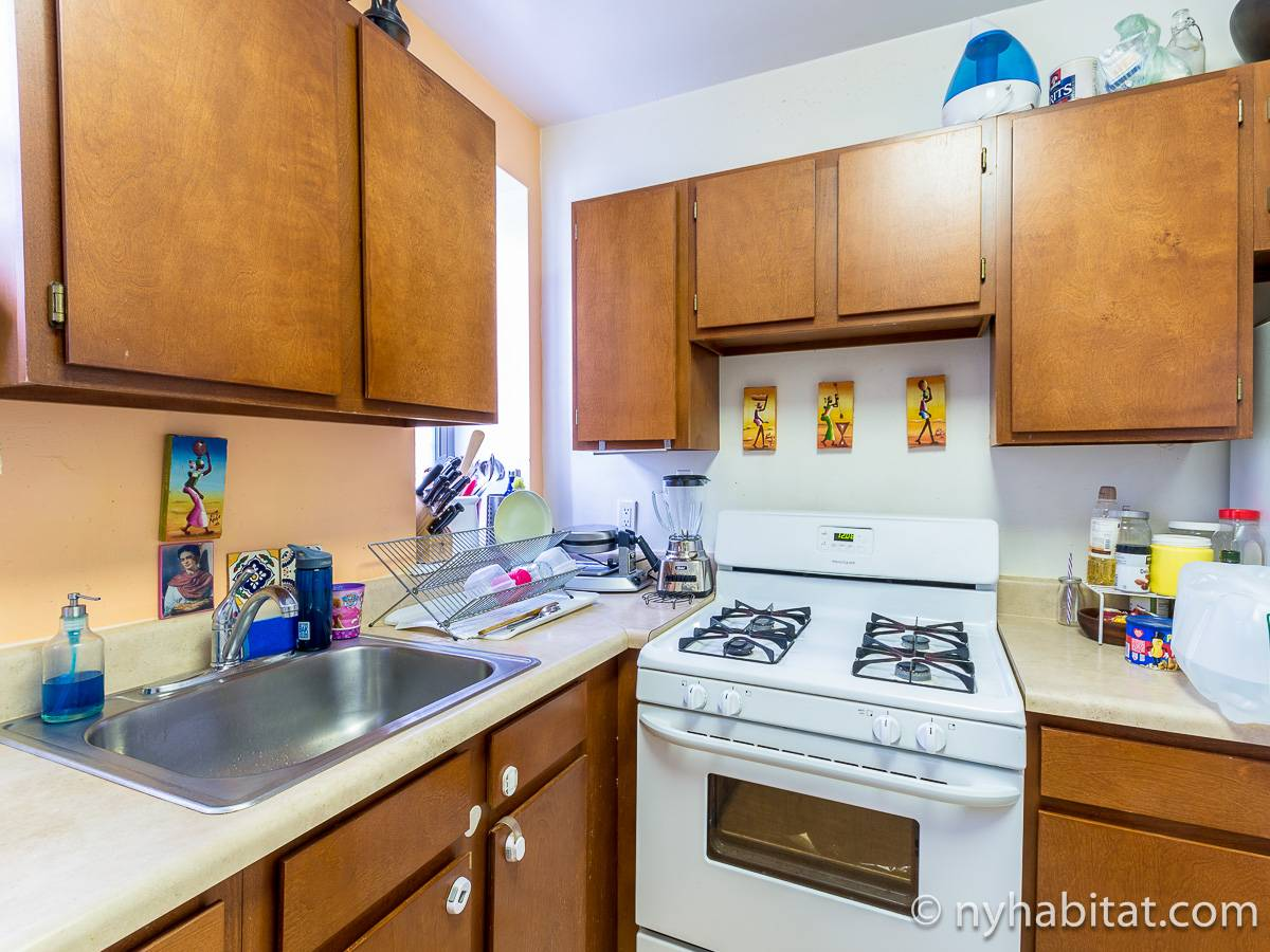 New York T3 appartement colocation - cuisine (NY-17232) photo 3 sur 4