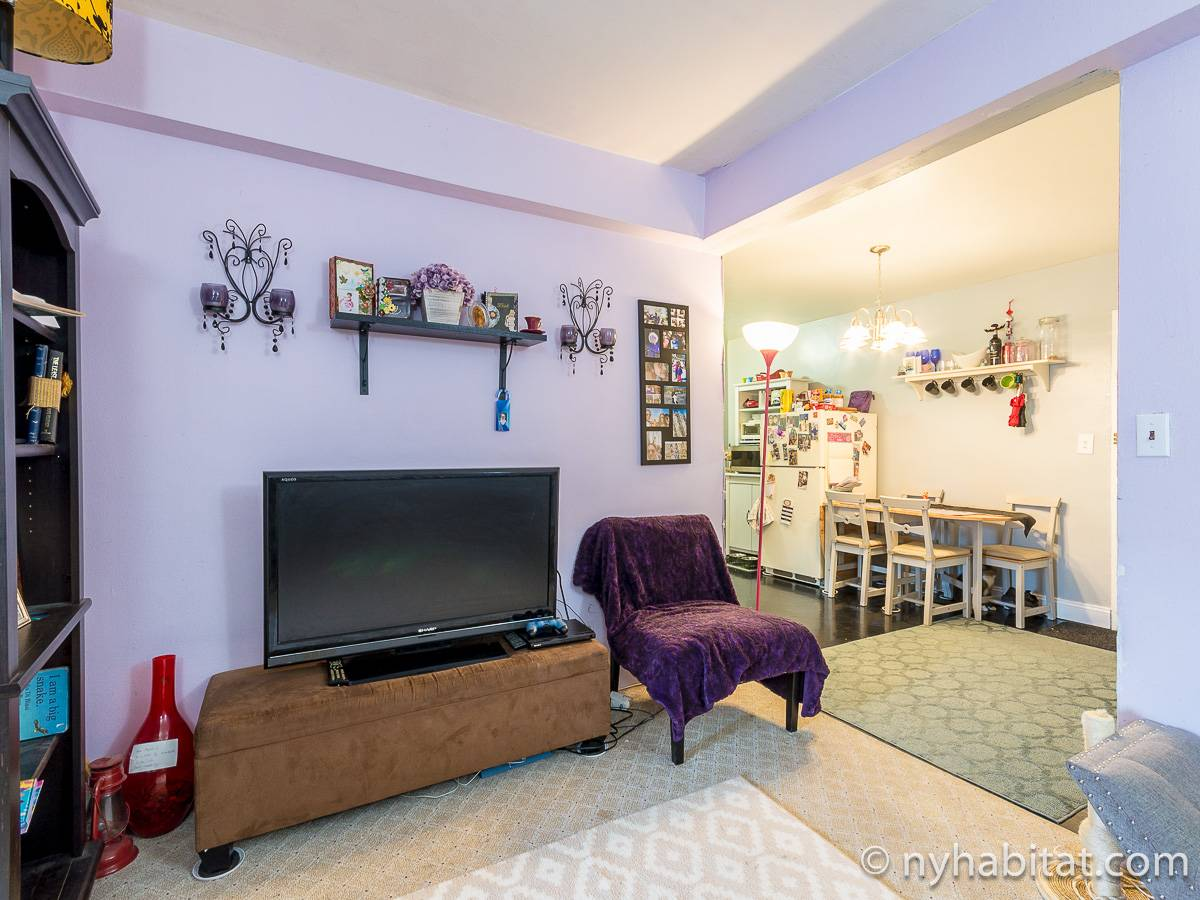 New York 2 Bedroom roommate share apartment - living room (NY-17274) photo 4 of 4