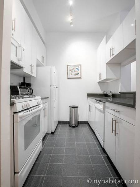 New York 2 Bedroom apartment - kitchen (NY-17287) photo 1 of 3