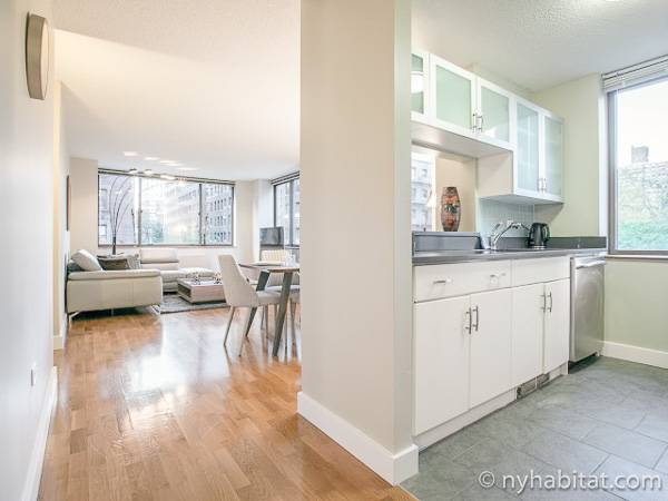 New York Studio apartment - kitchen (NY-17319) photo 2 of 2