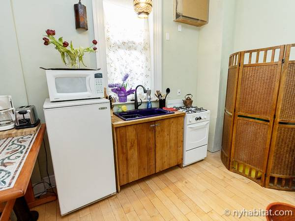 New York Studio T1 appartement location vacances - cuisine (NY-4062) photo 2 sur 4
