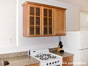 New York 1 Bedroom apartment - kitchen (NY-6252) photo 3 of 4