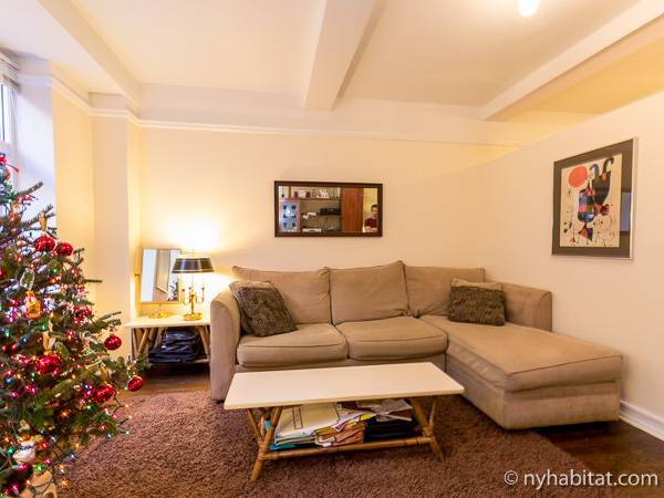 New York Alcove Studio apartment - living room (NY-6441) photo 2 of 9
