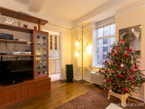 New York Alcove Studio apartment - living room (NY-6441) photo 3 of 9