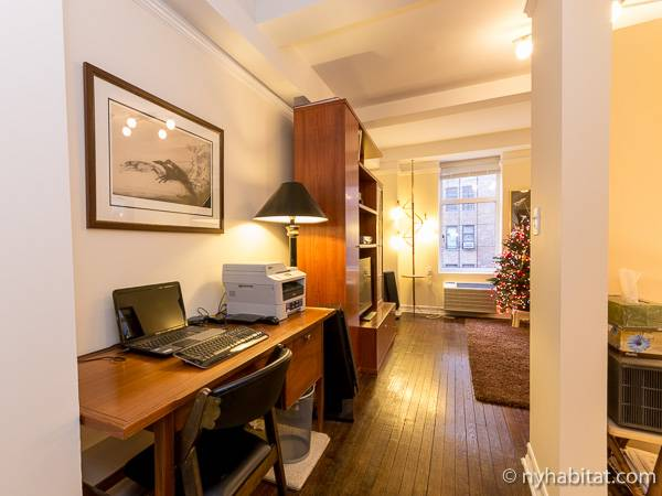 New York Alcove Studio apartment - living room (NY-6441) photo 6 of 9