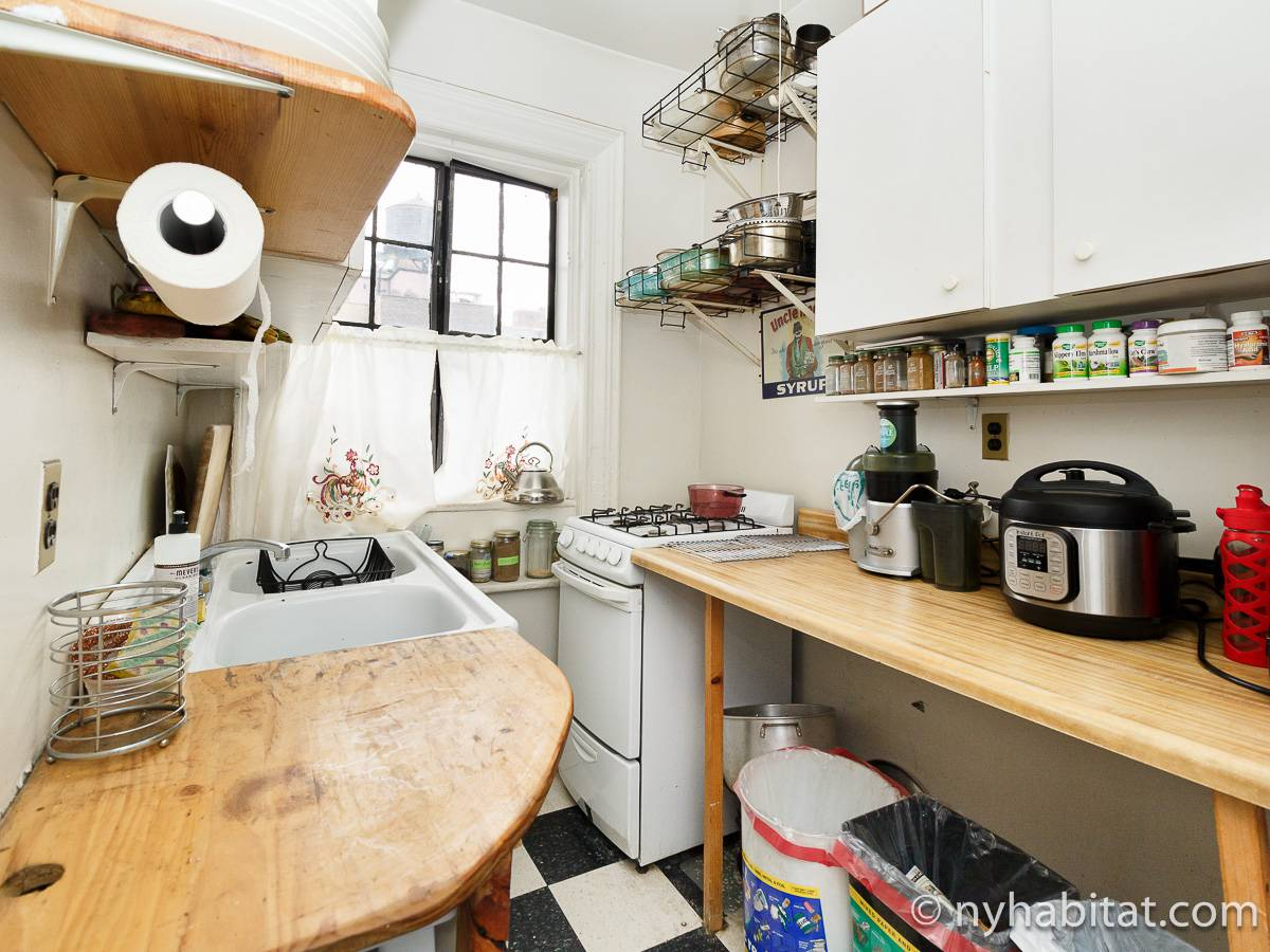 New York Roommate Room For Rent In West Village 2