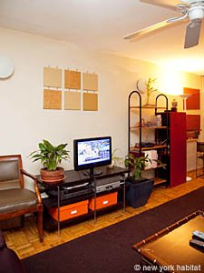 New York 3 Bedroom - Duplex roommate share apartment - living room (NY-8114) photo 3 of 4