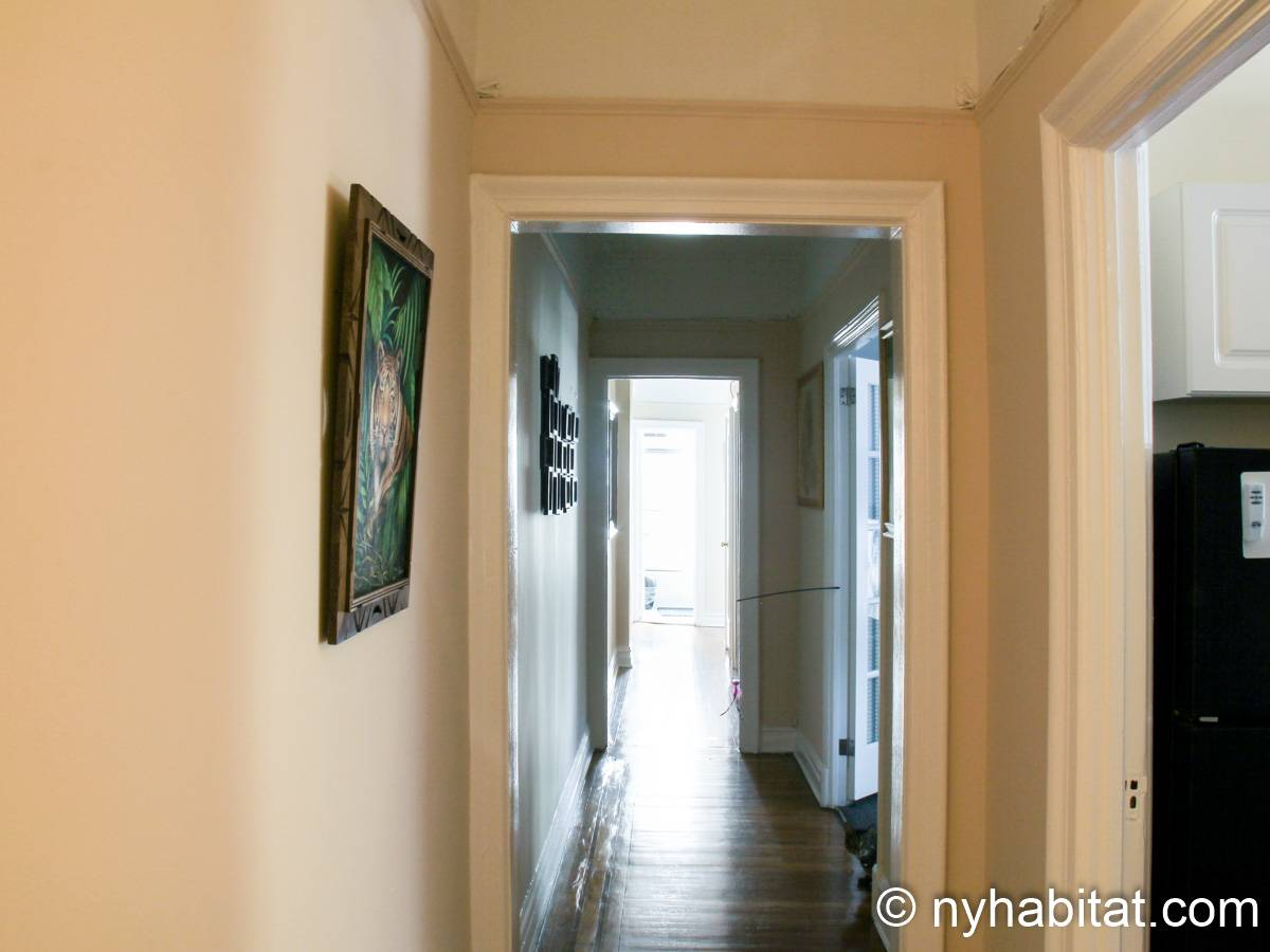 New York 3 Bedroom roommate share apartment - other (NY-8264) photo 1 of 4