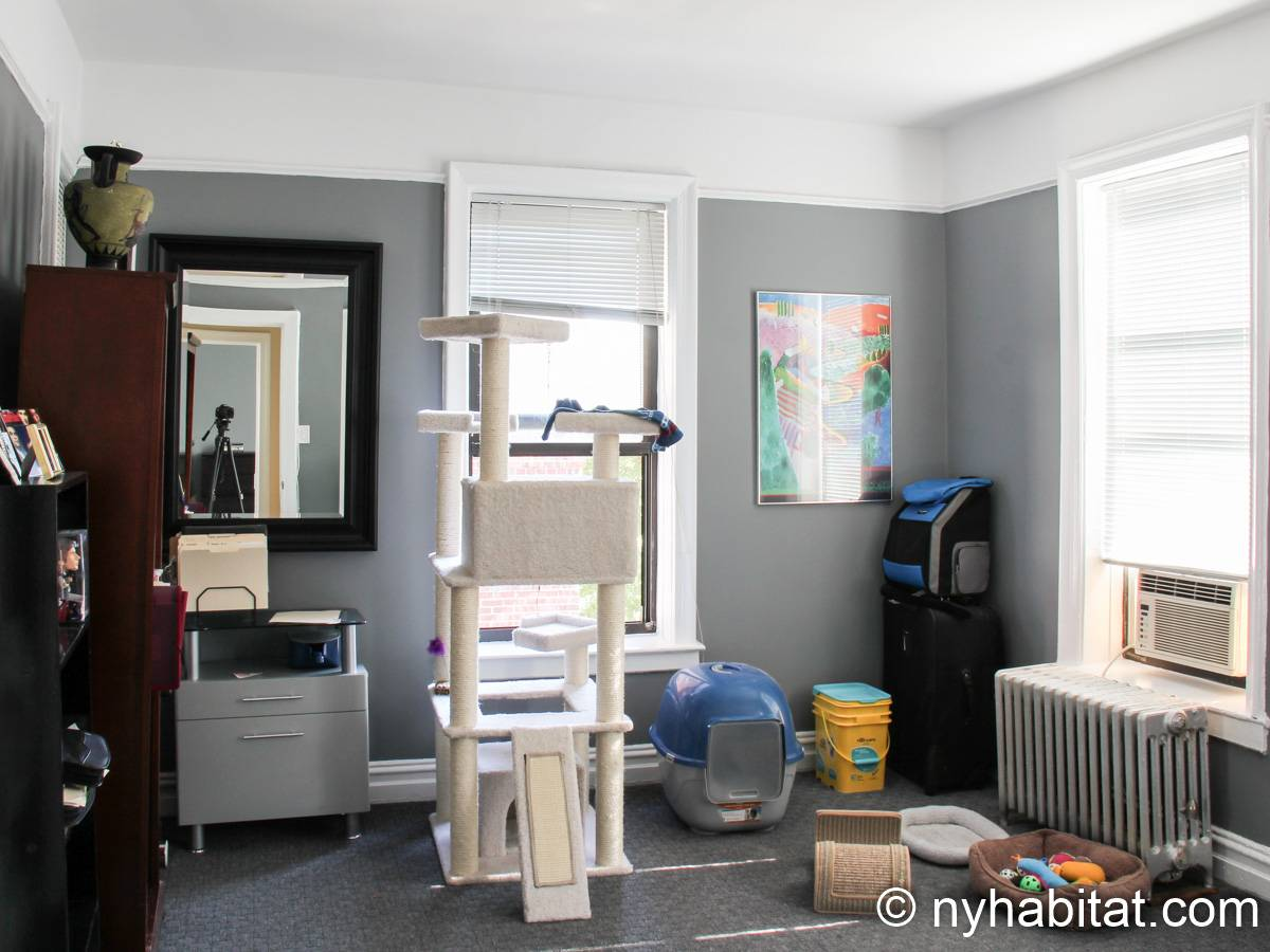 New York 3 Bedroom roommate share apartment - bedroom 1 (NY-8264) photo 5 of 5