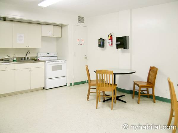 New York T2 appartement colocation - cuisine 2 (NY-8298) photo 4 sur 4