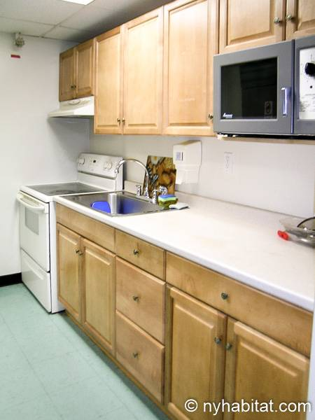 New York T2 appartement colocation - cuisine 1 (NY-8298) photo 1 sur 1
