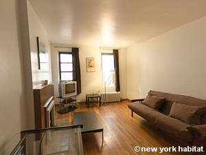 New York Studio T1 logement location appartement - séjour (NY-8404) photo 1 sur 5