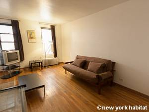 New York Studio T1 logement location appartement - séjour (NY-8404) photo 5 sur 5