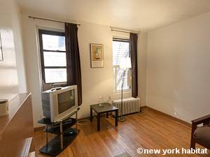 New York Studio T1 logement location appartement - séjour (NY-8404) photo 4 sur 5