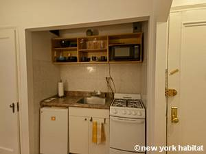 New York Studio T1 logement location appartement - cuisine (NY-8404) photo 2 sur 4