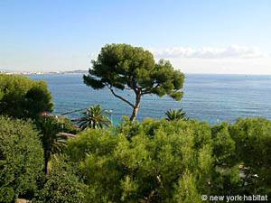 South of France - French Riviera - Studio apartment - living room (PR-175) photo 11 of 13