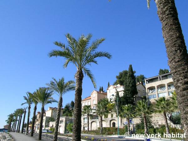 South of France - French Riviera - 4 Bedroom - Villa accommodation - other (PR-340) photo 7 of 16