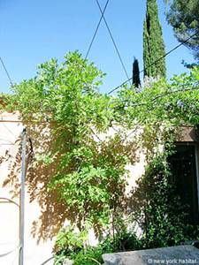 South of France - Provence - 2 Bedroom - Villa apartment - other (PR-654) photo 4 of 15