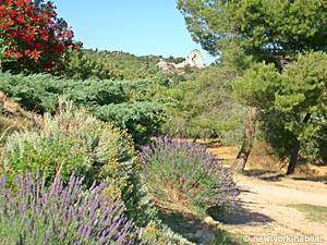 South of France - Provence - 4 Bedroom - Villa accommodation - other (PR-692) photo 29 of 29