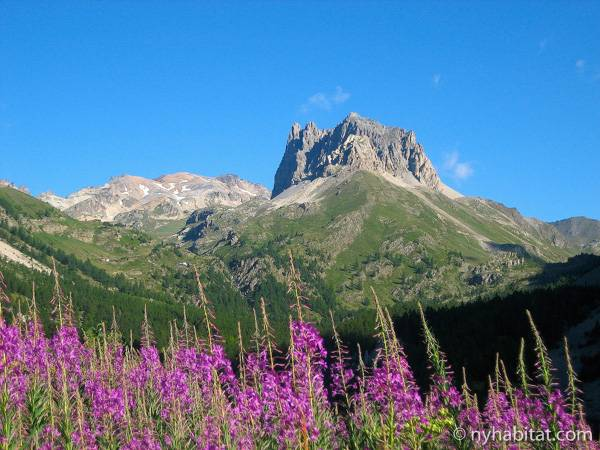 South of France - French Alps - 4 Bedroom - Chalet accommodation bed breakfast - other (PR-1017) photo 7 of 10