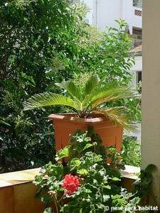 South of France - French Riviera - 2 Bedroom - Townhouse accommodation - other (PR-1069) photo 6 of 18