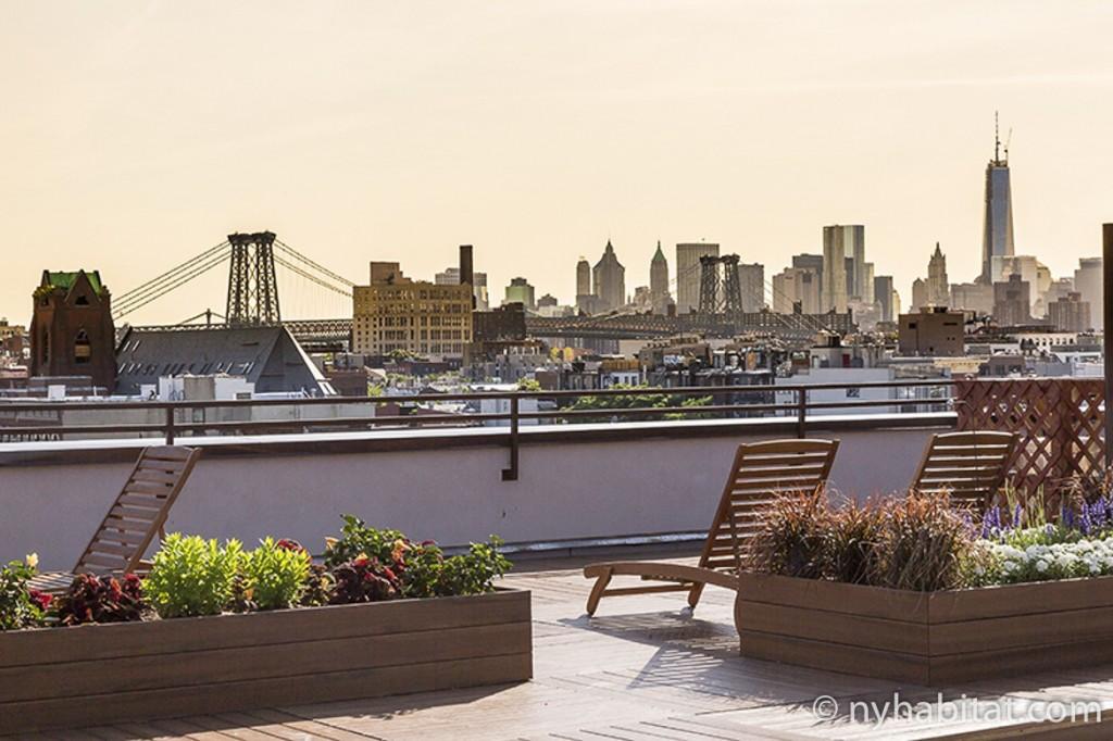 Imagen del horizonte urbano de Nueva York desde la terraza