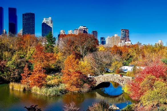 Imagen del lago de Central Park con un paisaje del follaje multicolor, un puente y vistas del horizonte.