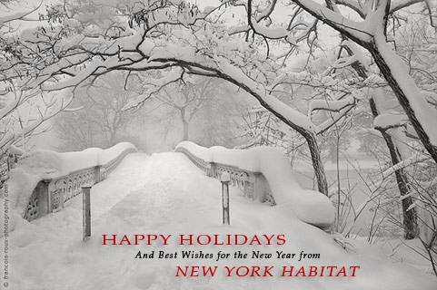 Happy Holidays and Best Wishes for the New Year