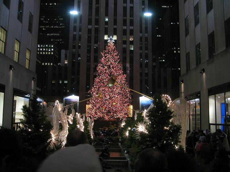 New York Habitat and the City's Big, Bright Christmas Tree