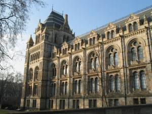 London Attraction:The Natural History Museum
