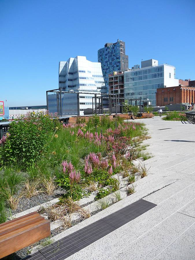 New York's High-line park