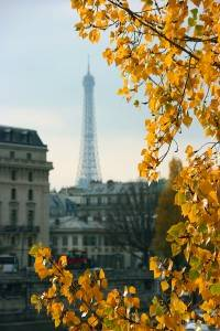 Paris and the Eiffel Tower in the Fall