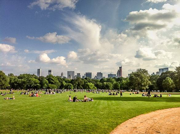 Image of the Great Lawn in Central Park with NYC's skyscrapers in the distance