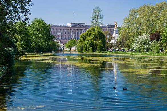 Image of Buckingham Palace taken from London's St. James's Park