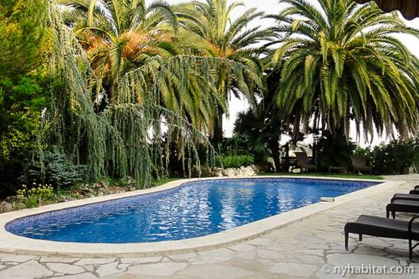Image of the garden and swimming pool of a villa in La Gaude